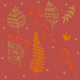Elements. Painted plants, leaves, berries, ferns Stock Photography