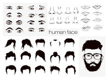 Elements of a person's face men vector illustration
