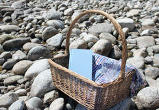 Elements of picnic. Outdoor picture with a picnic basket, a book, a glass of wine and a colorful cloth Stock Photography