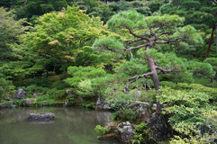 Elements of traditional Japanese garden Stock Photo