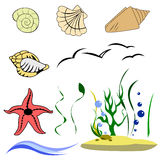 Elements of the underwater world Stock Image