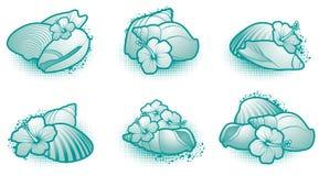 elementu seashell Fotografia Stock
