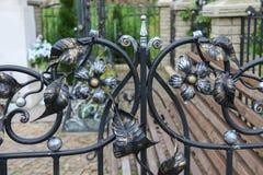 Elementy dekoracyjny kwiecisty ornament Zdjęcie Stock