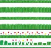 elementy grass naturalnych tulipany Obraz Royalty Free