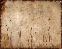 elementy obrazu ornamentacyjny tło Fotografia Stock
