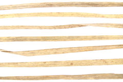Elementy od suchej trawy dla graficznego projekta na białym tle Obraz Stock