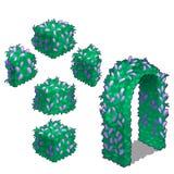 Elementy ogrodowy projekt od greenery wektor ilustracja wektor