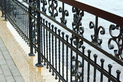 Elementy skucie, żelaza ogrodzenie Zdjęcie Stock
