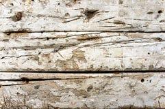 elementy tła architekturę drzwi tekstury składowania metalu rocznego stara wiejska drewna Obraz Royalty Free