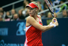 Elena Dementieva. Russian tennis player royalty free stock photo