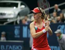 Elena Dementieva. Russian tennis player Stock Photography