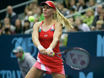 Elena Dementieva Photos stock