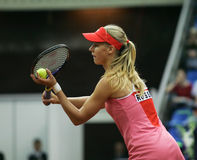 Elena Dementieva. Russian tennis player stock images