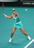 Elena DEMENTIEVA (RUS) at Open GDF Suez 2010 Royalty Free Stock Photo