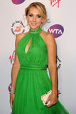 Elena Vesnina Royalty Free Stock Images