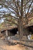 Elendsviertel in Indien Lizenzfreie Stockbilder