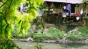 Elendsviertelbretterbuden auf dem Flussufer stock video footage