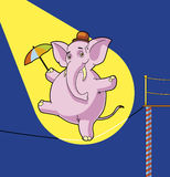 Elepahnt tightrope walker. Vector Elepahnt tightrope walker with umbrella Stock Illustration