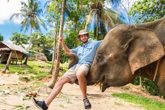 Elephan lifting a tourist. Royalty Free Stock Images