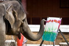 Elephant. Photo of an elephant painting a picture Stock Photos