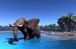 Elephant. Royalty Free Stock Photography