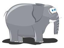 Elephant. An illustration Image for Cartoon Elephant Stock Images