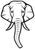Elephant. Head, indian  head Stock Image