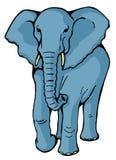 Elephant. Cartoon style illustrations of elephant Stock Photography