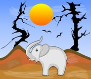 Elephant in Africa arid desert with dry trees, vector illustration. In eps10 Stock Photography
