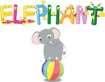 Elephant alphabet Stock Photos