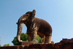Elephant at Angkor Wat. Elephant in the temple of Angkor Wat Royalty Free Stock Photos