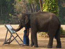 Elephant artist. Painting flowers in Thailand stock image