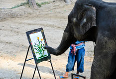 Elephant artist painting Royalty Free Stock Photos
