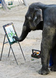 Elephant artist painting. Talented elephant artist at Maesa Elephant Camp in Chiang Mai, Thailand royalty free stock photography