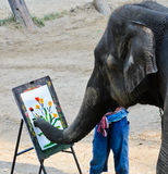 Elephant artist painting stock image