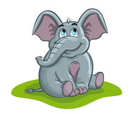 Elephant baby. Cute elephant baby in cartoon style for design Stock Images
