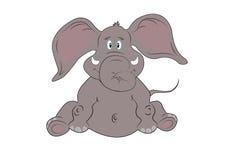 Elephant baby Stock Photography