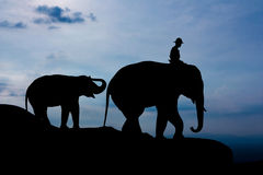 Elephant and baby on the mountain Royalty Free Stock Images