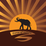 Elephant on a background a sun. Vector image. Logo, icon. Design for banner, poster, illustratie book, print on fabric or paper Royalty Free Stock Image