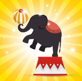 Elephant balance festival funfair. Illustration eps 10 Stock Images