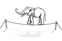Elephant balancing. Acrobatic elephant balance on rope vector illustration
