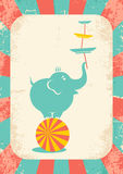 Elephant on the ball. Illustration of an elephant on the ball at the circus Stock Photography