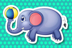 Elephant and ball Royalty Free Stock Photography