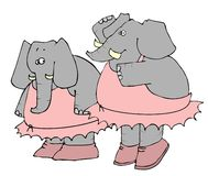 Elephant Ballet Stock Photo