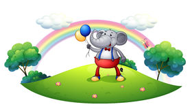 An elephant with balloons at the hilltop Royalty Free Stock Photo