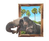 Elephant in bamboo frame with 3d effect stock photography