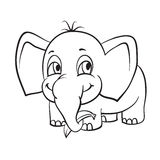 Elephant with banana Royalty Free Stock Images