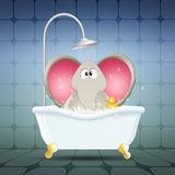 Elephant on bath Royalty Free Stock Images