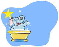 Elephant Bath Star Stock Photos