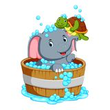 An elephant is bathing and playing with a turtle taht is very pleasant royalty free illustration